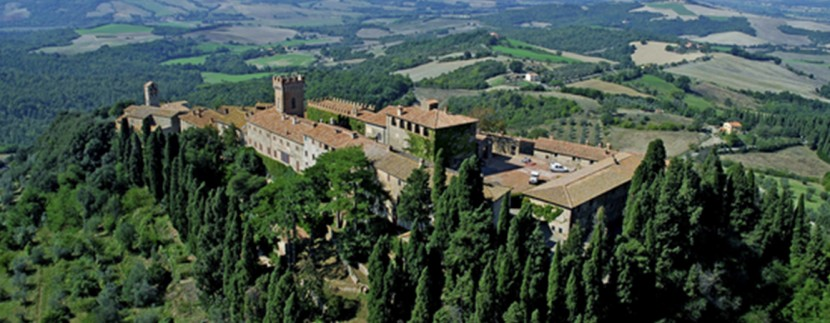 castello di querceto vineyard