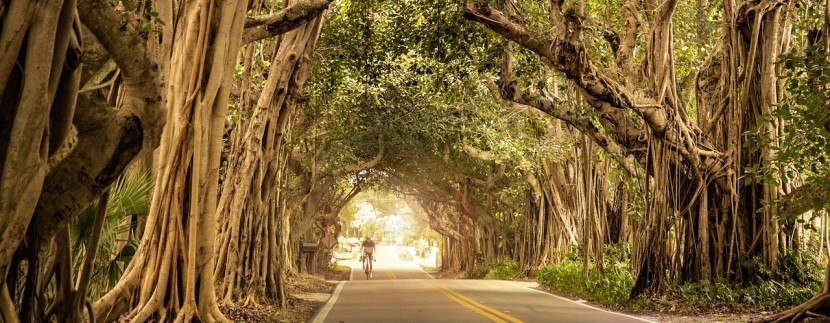 bike lanes naples fl